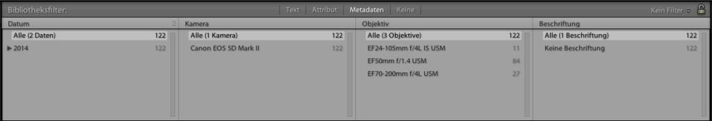 lightroom-filter-5