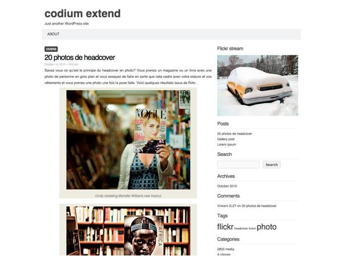 Bild: Screenshot Codium Extend von code reduction